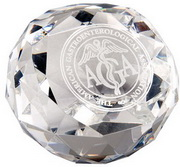 Alpha E. Glass Award Paperweight - RCA5504