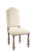 Aqua Pear Amethea Deluxe Dione Side Chair by Pulaski - JPK4576