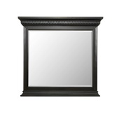 Aqua Pear Brookfield Deluxe Mirror by Pulaski - JPK4434