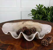 Clam Shell Bowl  - LUT8171