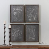 Root Study Art Set of 4