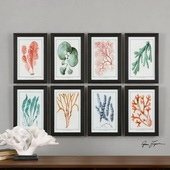 Colorful Algae Framed Art S/8 - LUT2985