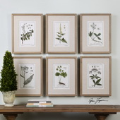 Green Floral Botanical Study Art Set of 6