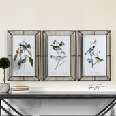 Warblers Art Set of 3