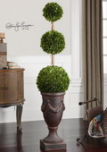 Triple Topiary Preserved Boxwood  - LUT8280