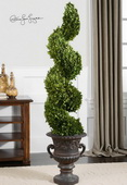 Spiral Topiary Preserved Boxwood  - LUT8281