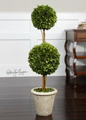 Two Sphere Topiary Preserved Boxwood  - LUT8284